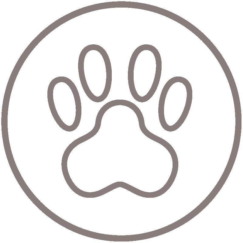 Medizinisches Hundetraining, Icon